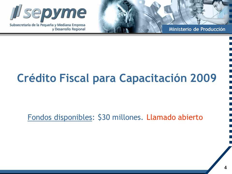 Crédito Fiscal para Capacitación 2009