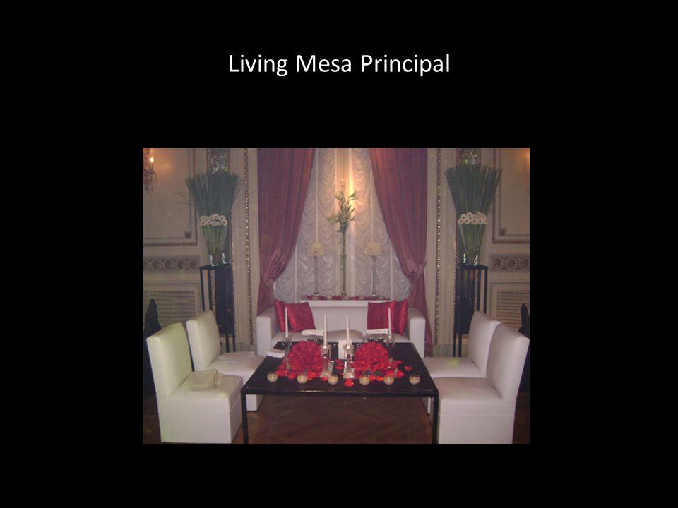 Living Mesa Principal