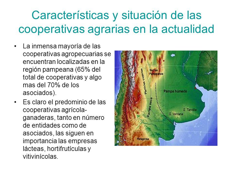 Características y situación de las cooperativas agrarias en la actualidad