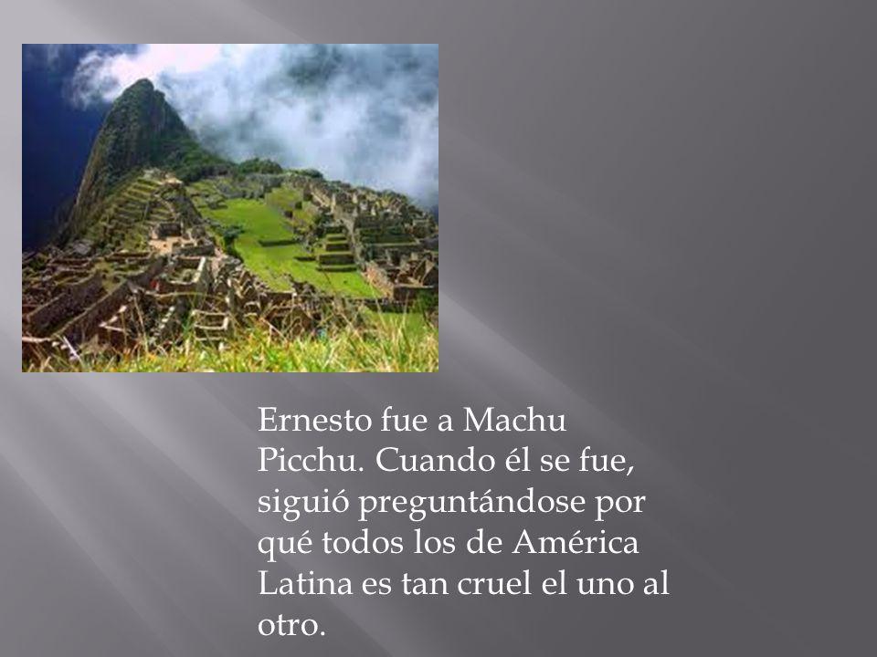 Ernesto fue a Machu Picchu