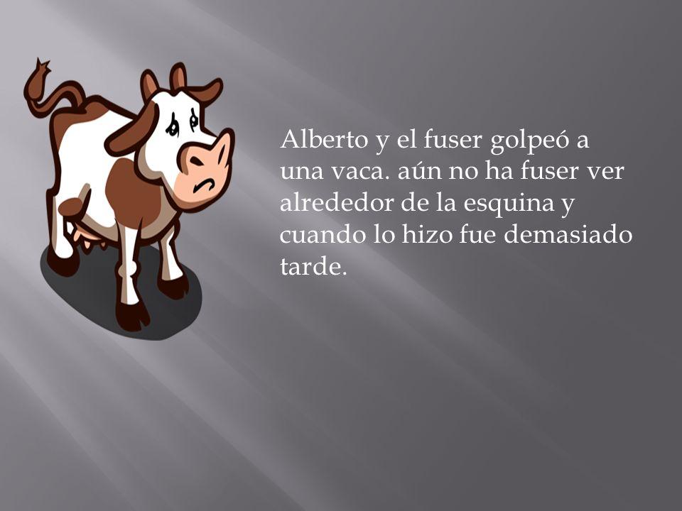 Alberto y el fuser golpeó a una vaca