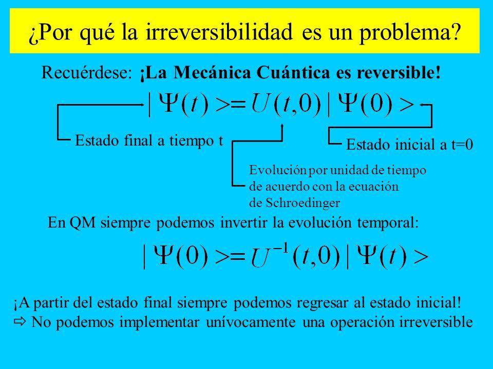 ¿Por qué la irreversibilidad es un problema