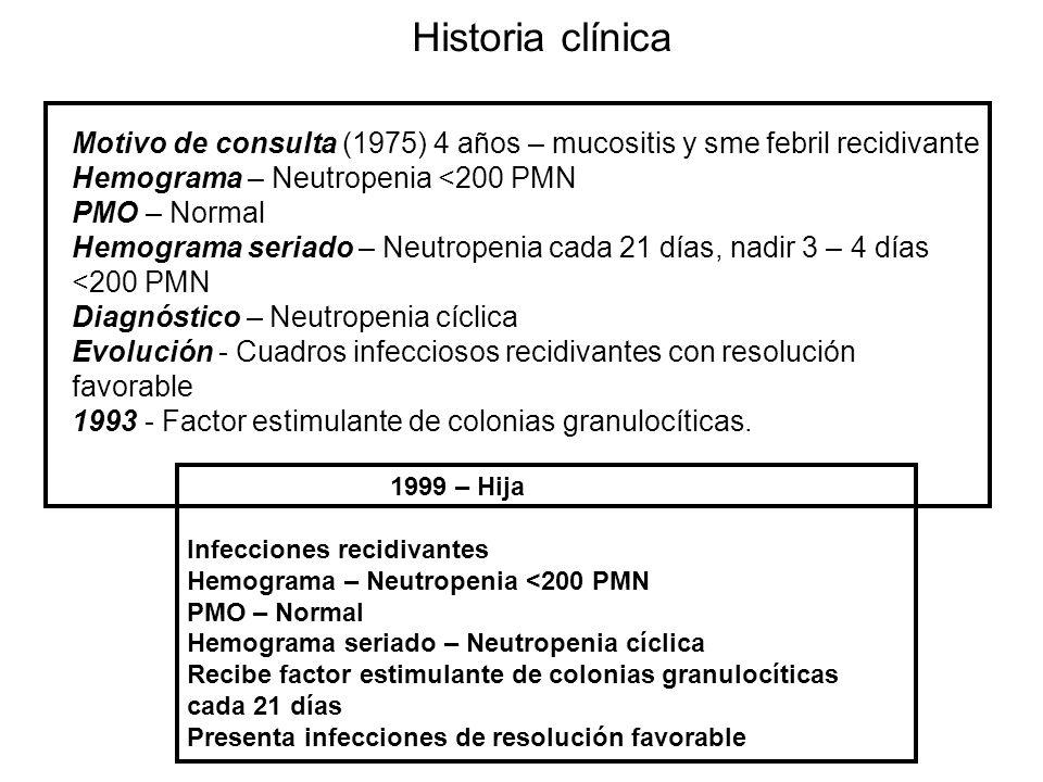 Historia clínica Motivo de consulta (1975) 4 años – mucositis y sme febril recidivante. Hemograma – Neutropenia <200 PMN.