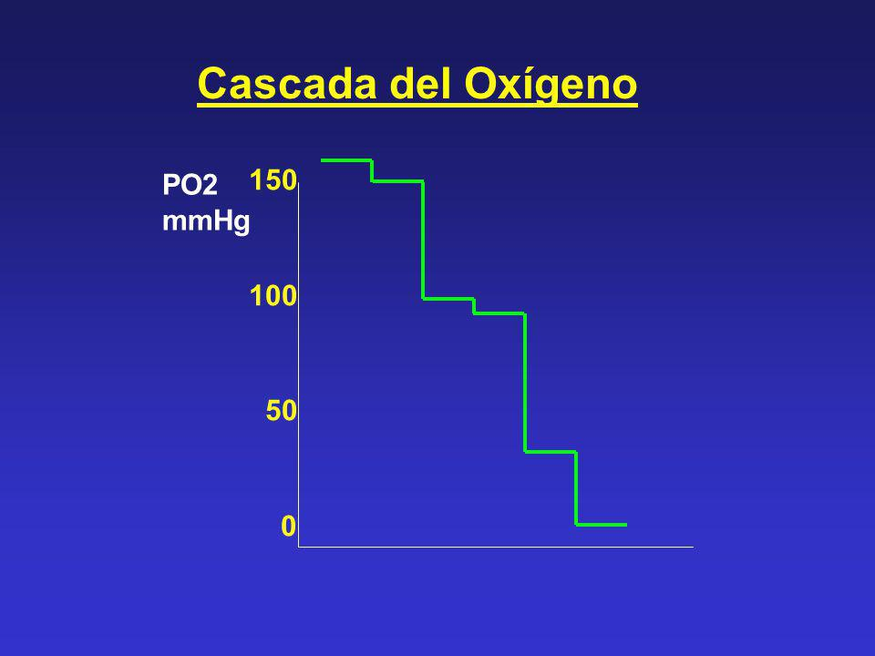 Cascada del Oxígeno 150 100 50 PO2 mmHg
