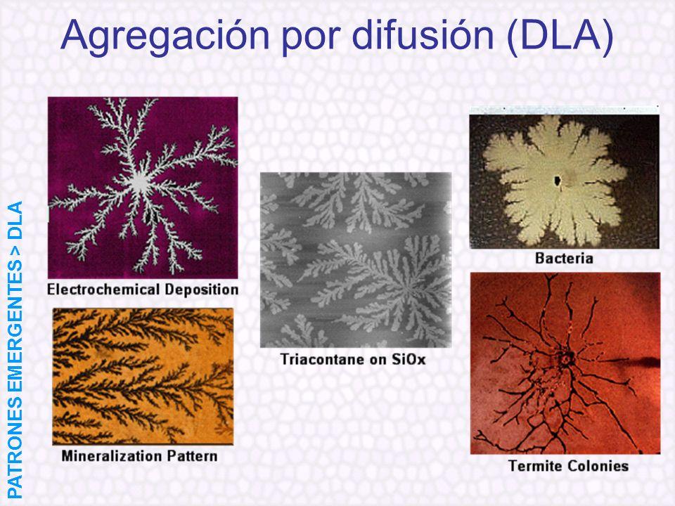 Agregación por difusión (DLA)