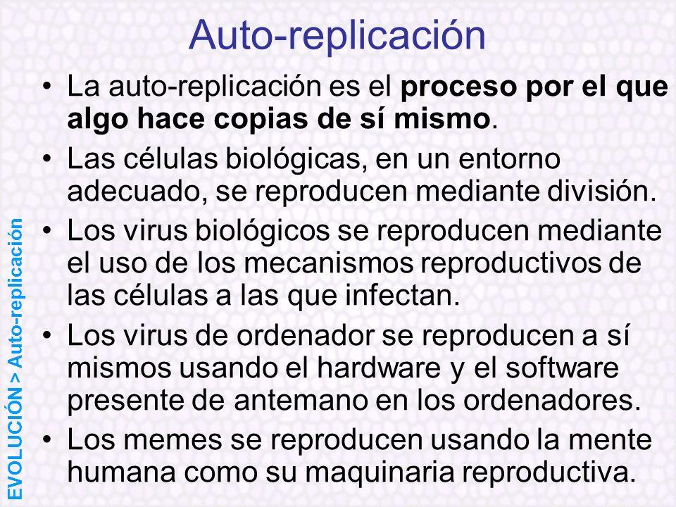 Auto-replicación La auto-replicación es el proceso por el que algo hace copias de sí mismo.