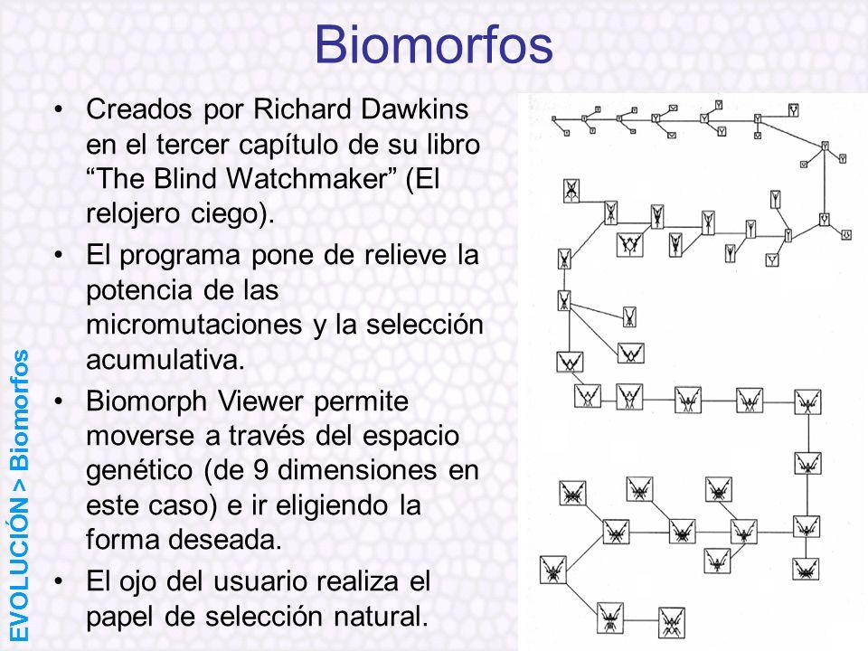 Biomorfos Creados por Richard Dawkins en el tercer capítulo de su libro The Blind Watchmaker (El relojero ciego).