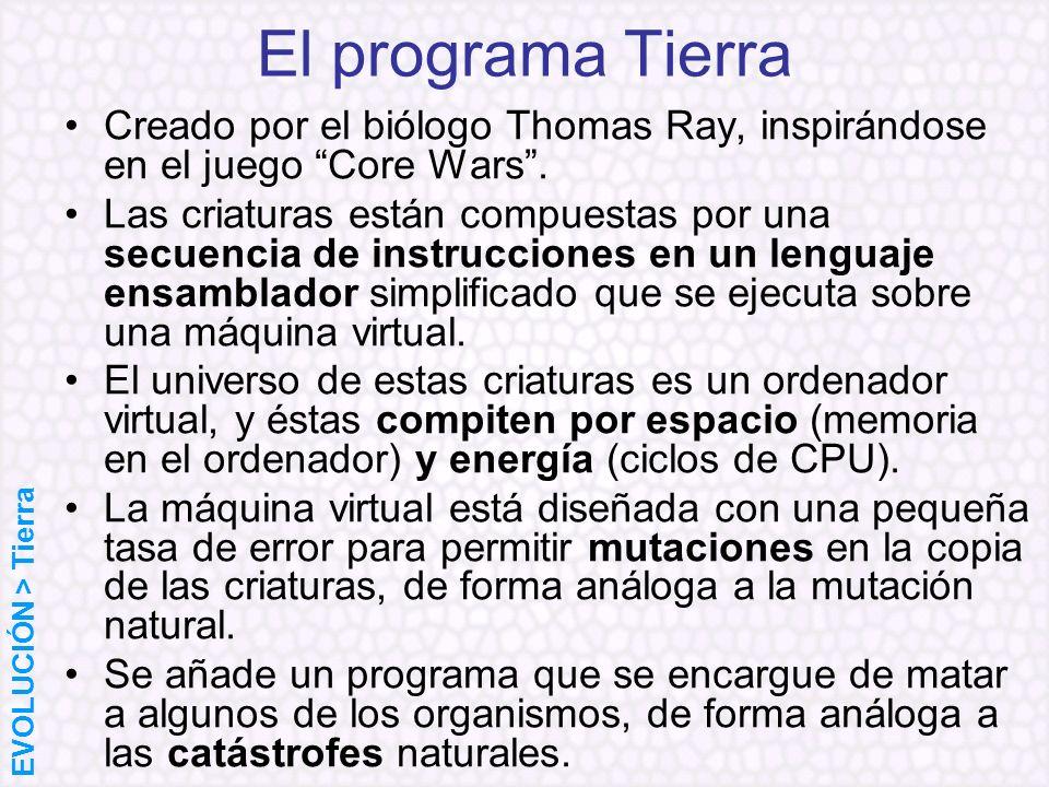 El programa Tierra Creado por el biólogo Thomas Ray, inspirándose en el juego Core Wars .