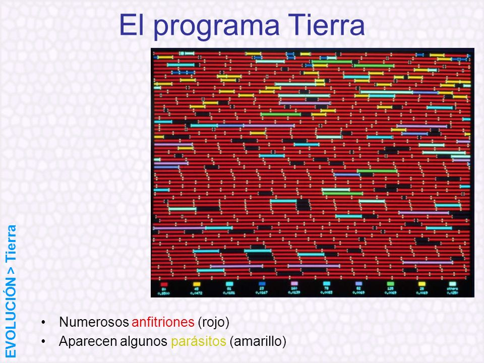 El programa Tierra EVOLUCIÓN > Tierra Numerosos anfitriones (rojo)
