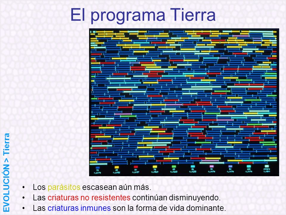 El programa Tierra EVOLUCIÓN > Tierra
