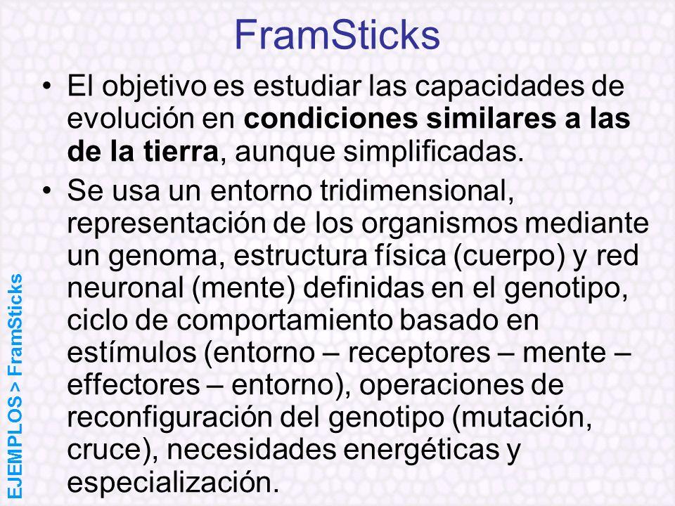 FramSticks El objetivo es estudiar las capacidades de evolución en condiciones similares a las de la tierra, aunque simplificadas.