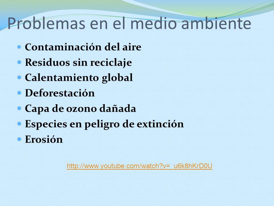 Problemas en el medio ambiente