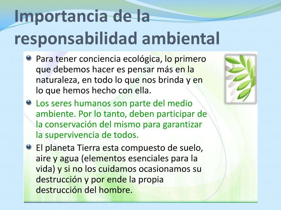 Importancia de la responsabilidad ambiental