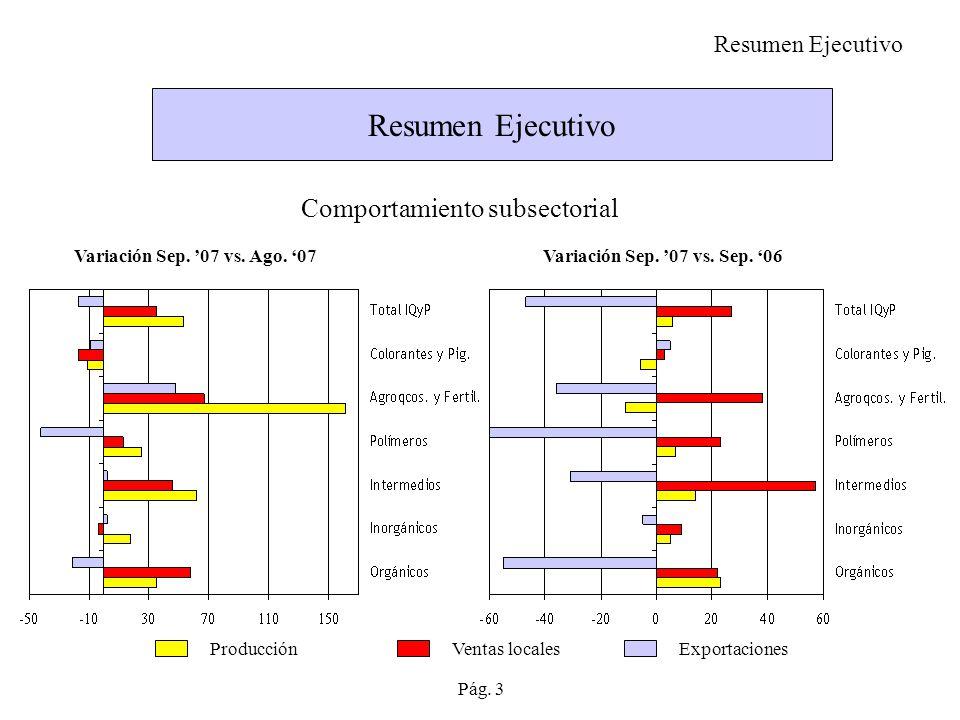 Resumen Ejecutivo Comportamiento subsectorial Resumen Ejecutivo
