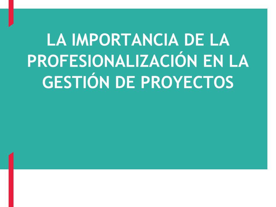 LA IMPORTANCIA DE LA PROFESIONALIZACIÓN EN LA GESTIÓN DE PROYECTOS