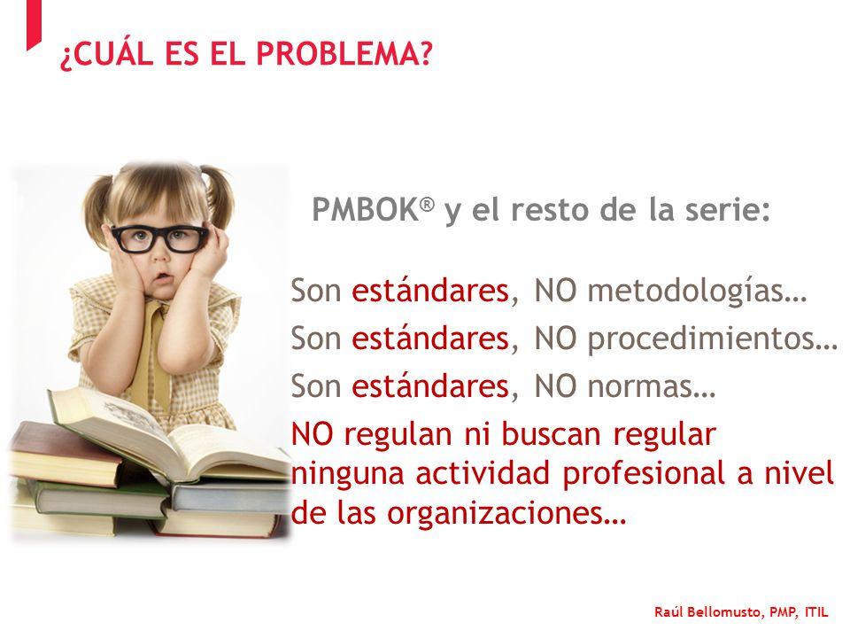 PMBOK® y el resto de la serie: