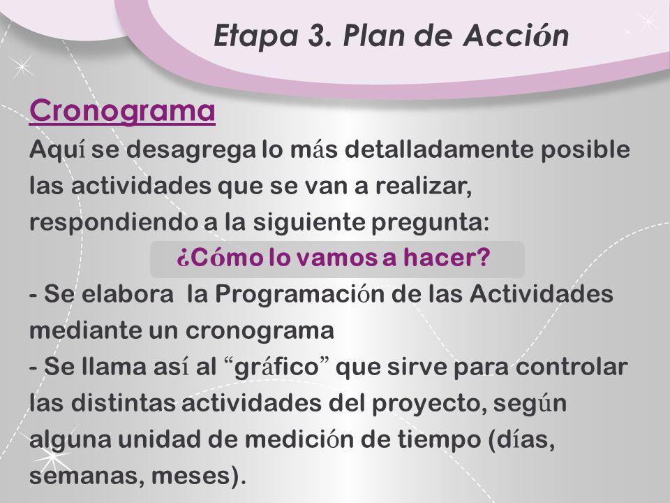 Etapa 3. Plan de Acción Cronograma