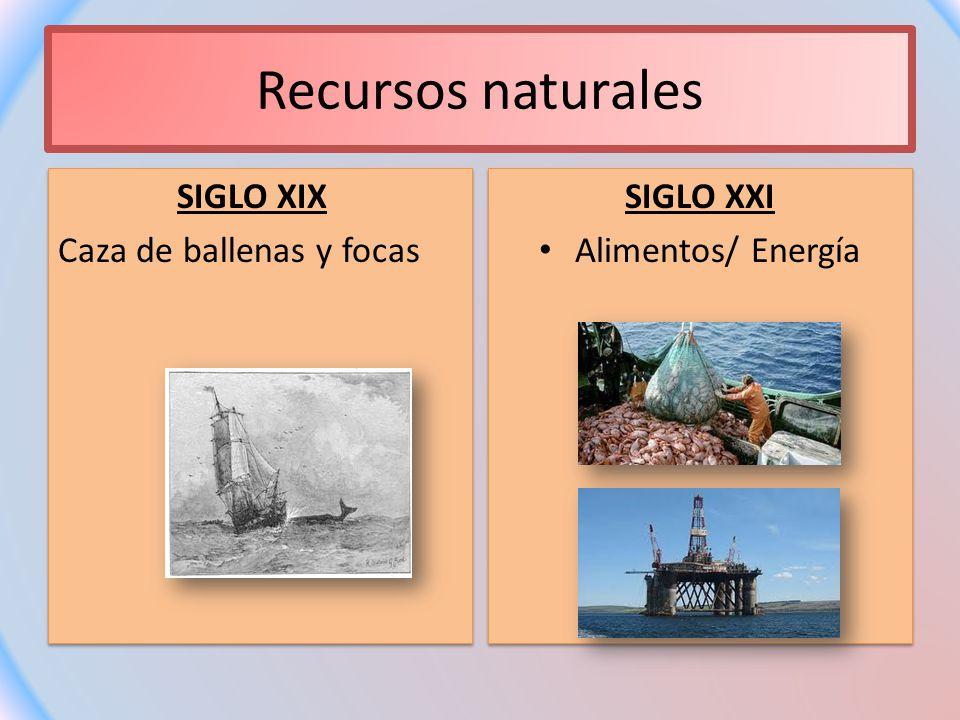 Recursos naturales SIGLO XIX Caza de ballenas y focas SIGLO XXI