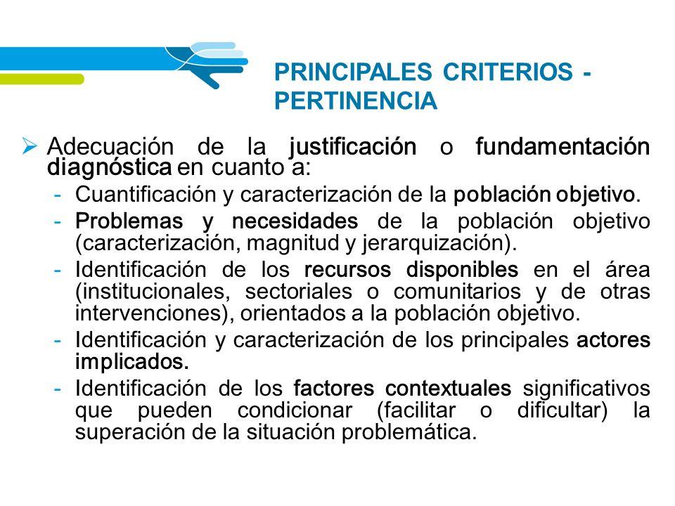 PRINCIPALES CRITERIOS - PERTINENCIA
