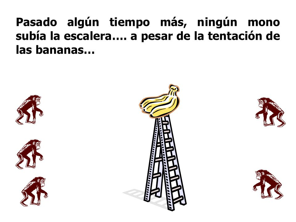 Pasado algún tiempo más, ningún mono subía la escalera…