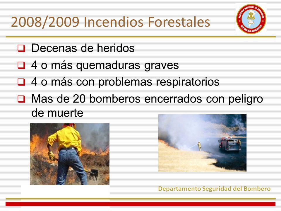 2008/2009 Incendios Forestales