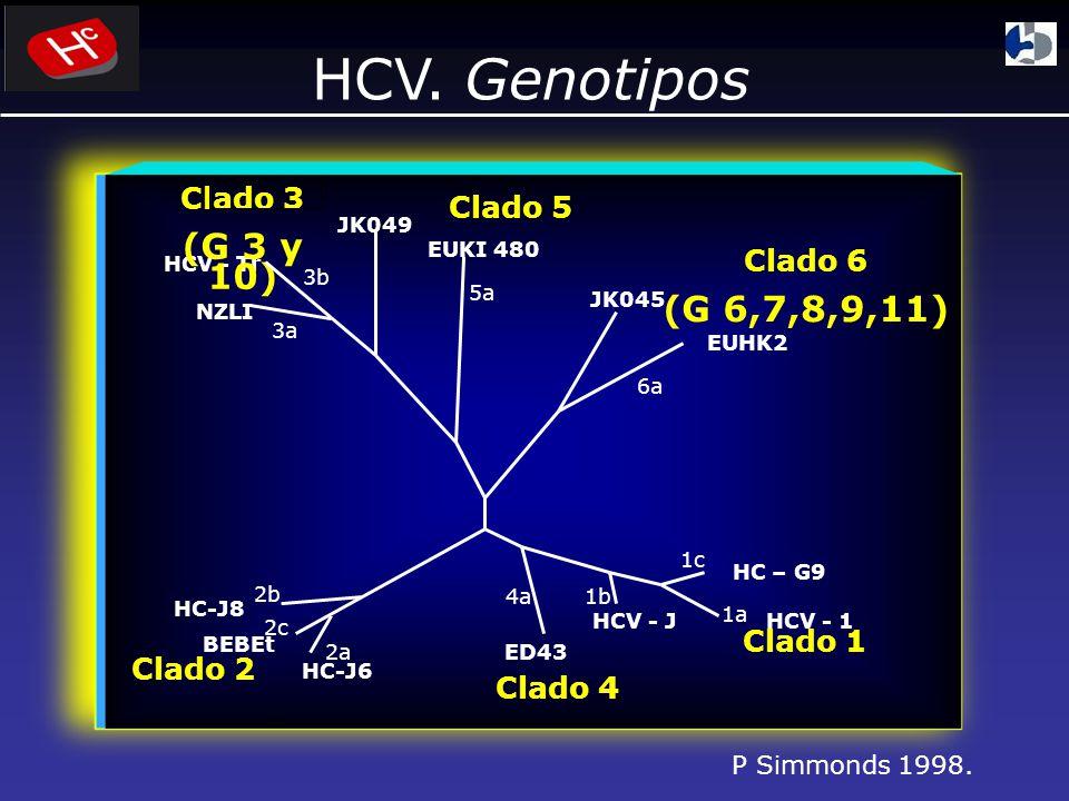 HCV. Genotipos (G 3 y 10) (G 6,7,8,9,11) Clado 3 Clado 5 Clado 6