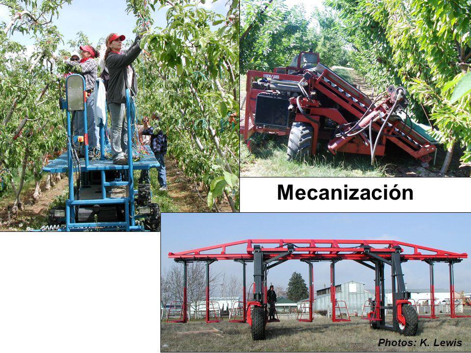 Mecanización Photos: K. Lewis