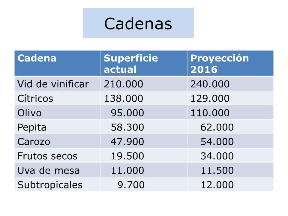 Cadenas Cadena Superficie actual Proyección 2016 Vid de vinificar