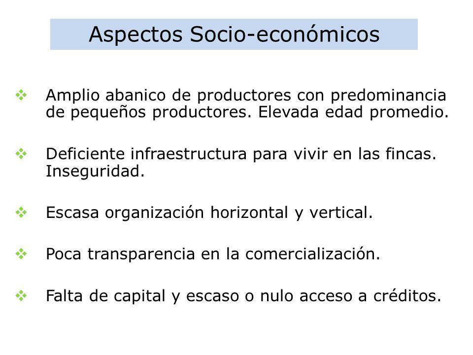 Aspectos Socio-económicos