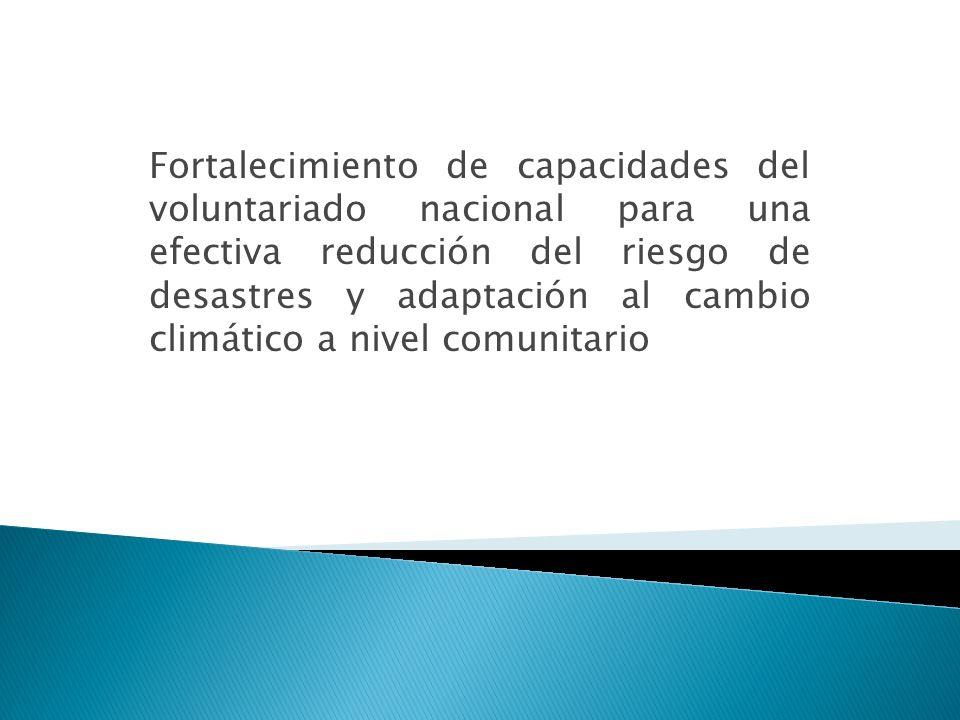 Fortalecimiento de capacidades del voluntariado nacional para una efectiva reducción del riesgo de desastres y adaptación al cambio climático a nivel comunitario