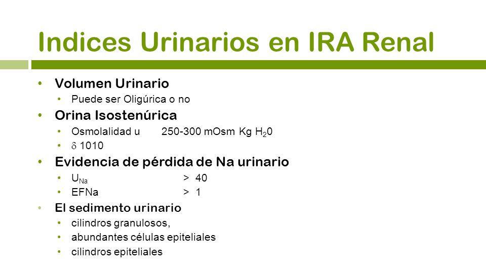 Indices Urinarios en IRA Renal
