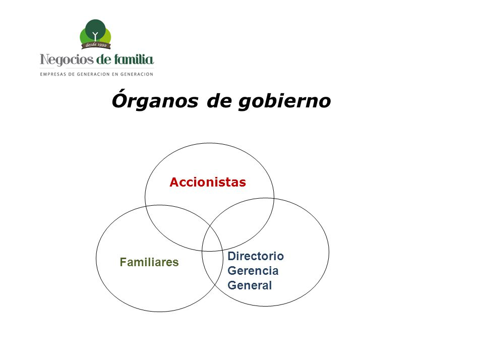 Órganos de gobierno Accionistas Directorio Gerencia General Familiares