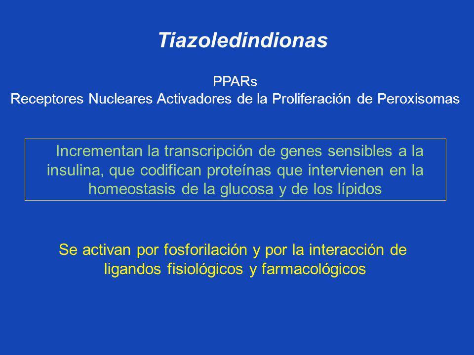 Tiazoledindionas PPARs. Receptores Nucleares Activadores de la Proliferación de Peroxisomas.