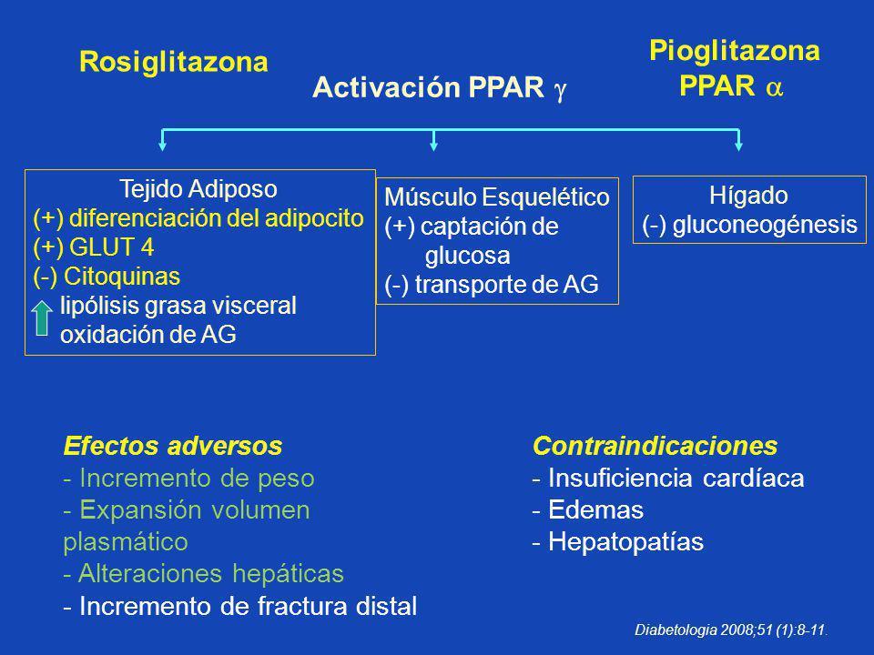 Pioglitazona PPAR  Activación PPAR 
