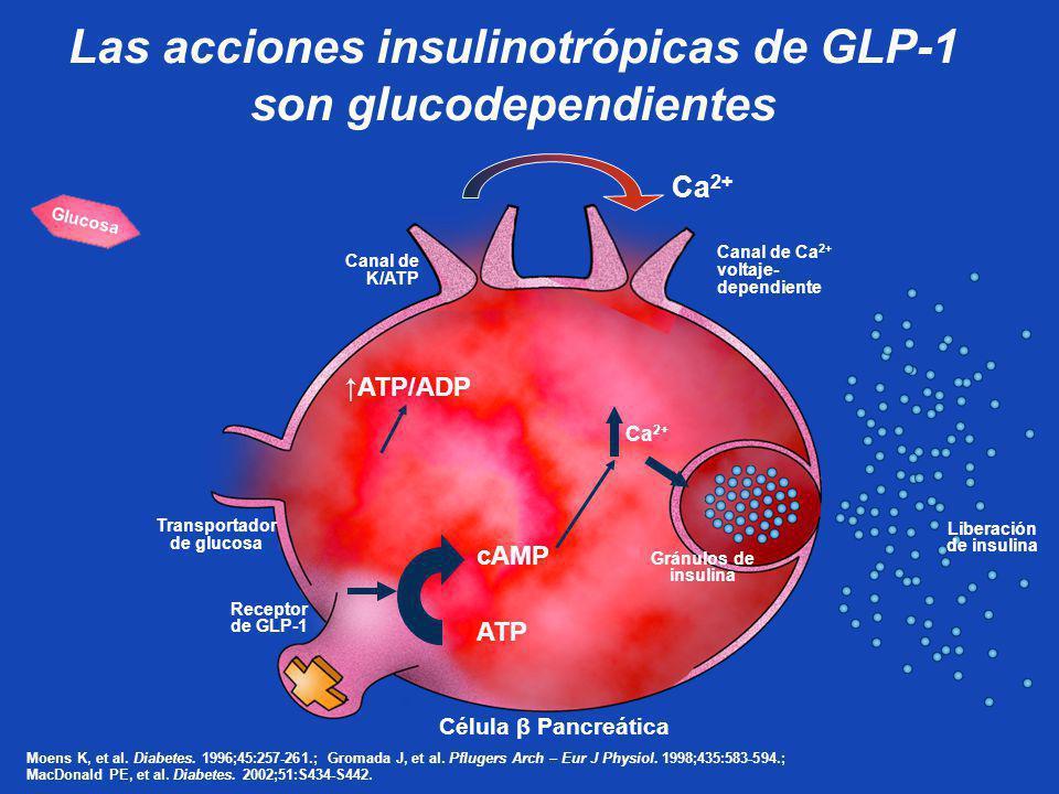 Las acciones insulinotrópicas de GLP-1 son glucodependientes