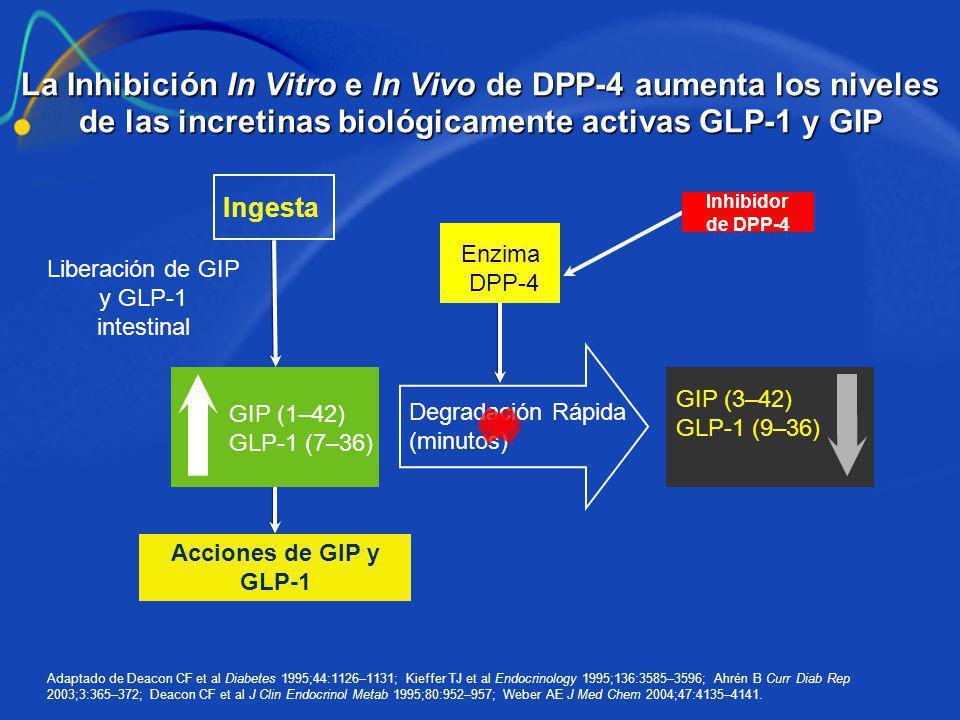 Liberación de GIP y GLP-1 intestinal