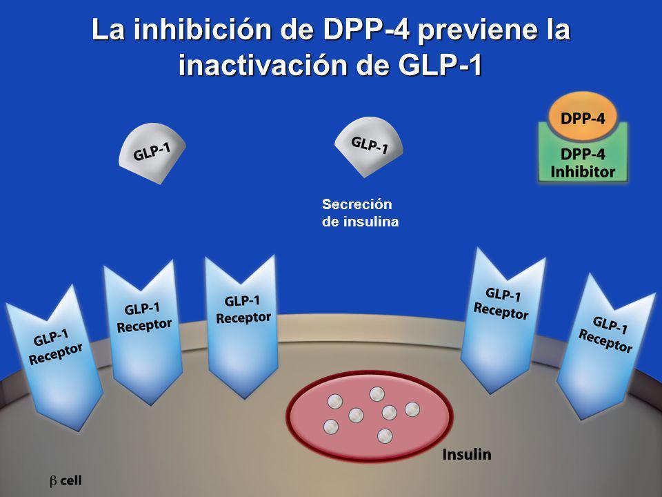 La inhibición de DPP-4 previene la inactivación de GLP-1