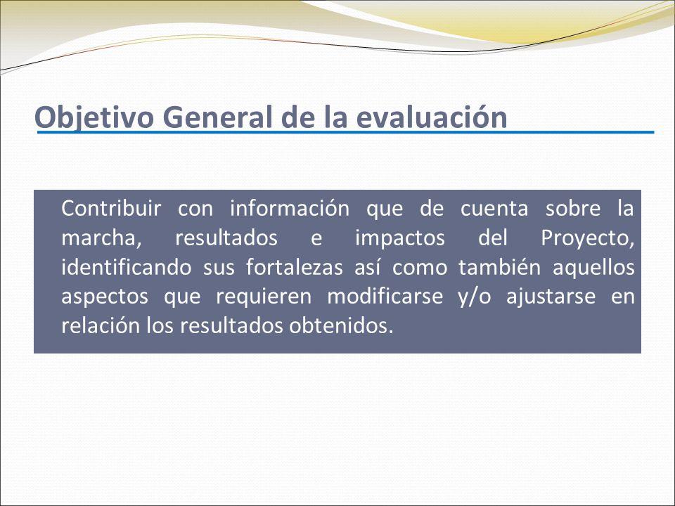 Objetivo General de la evaluación