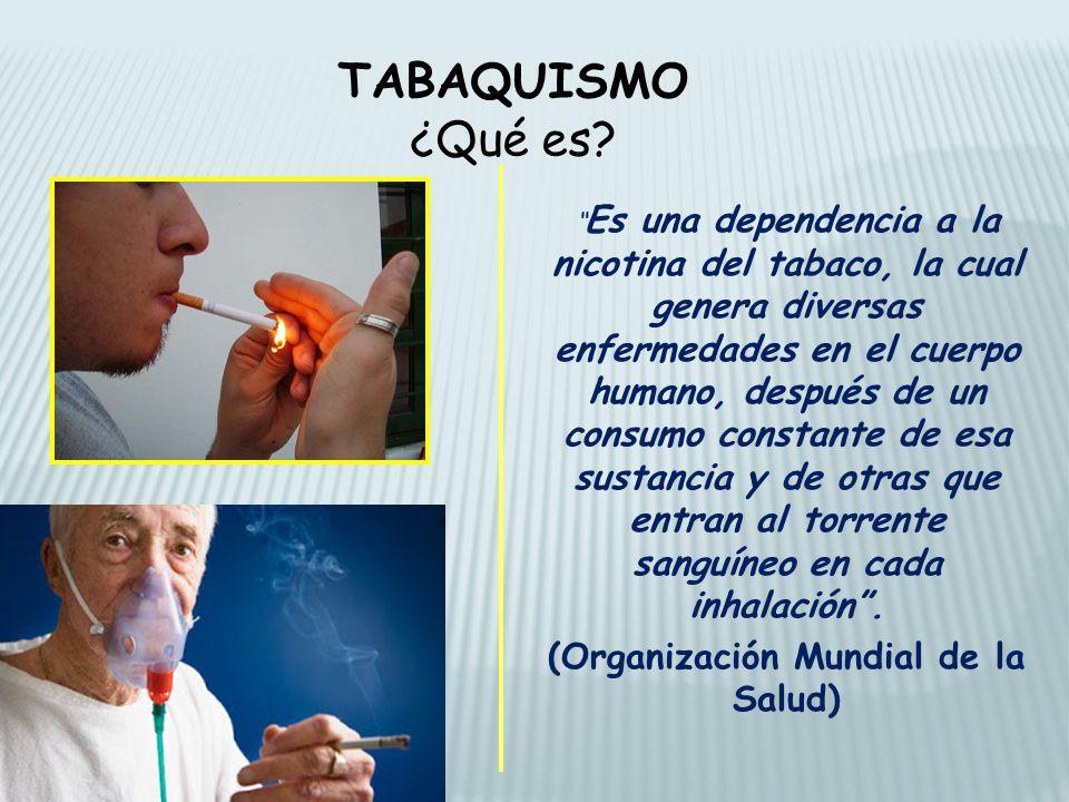 (Organización Mundial de la Salud)