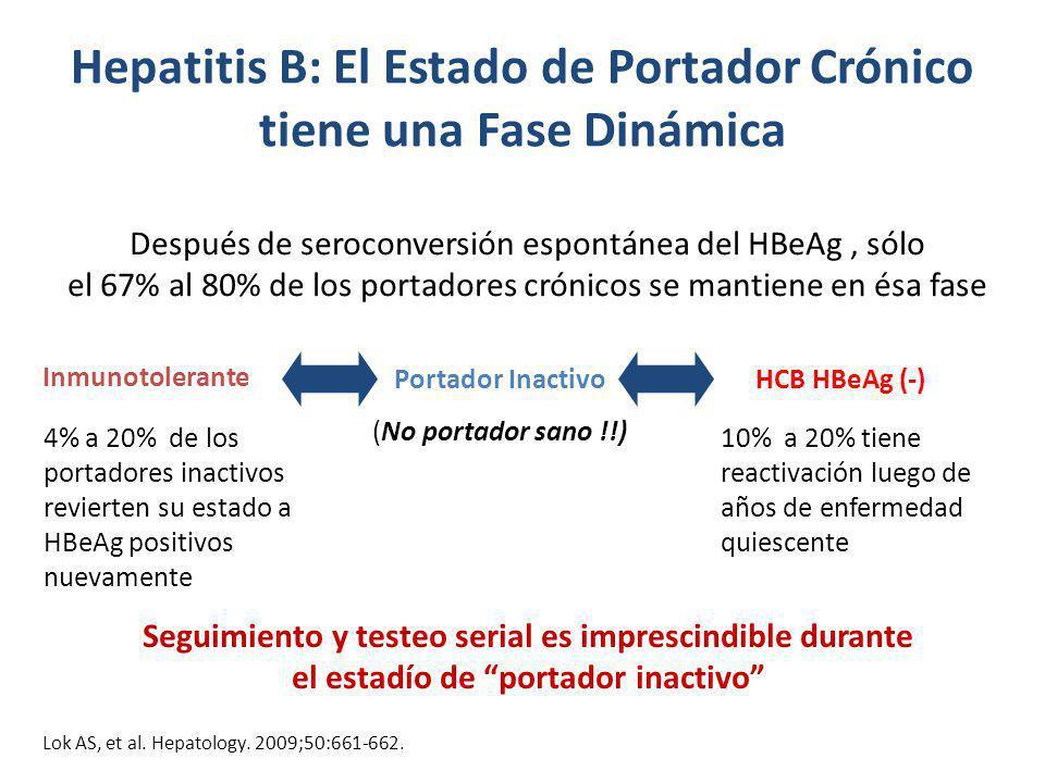 Hepatitis B: El Estado de Portador Crónico tiene una Fase Dinámica