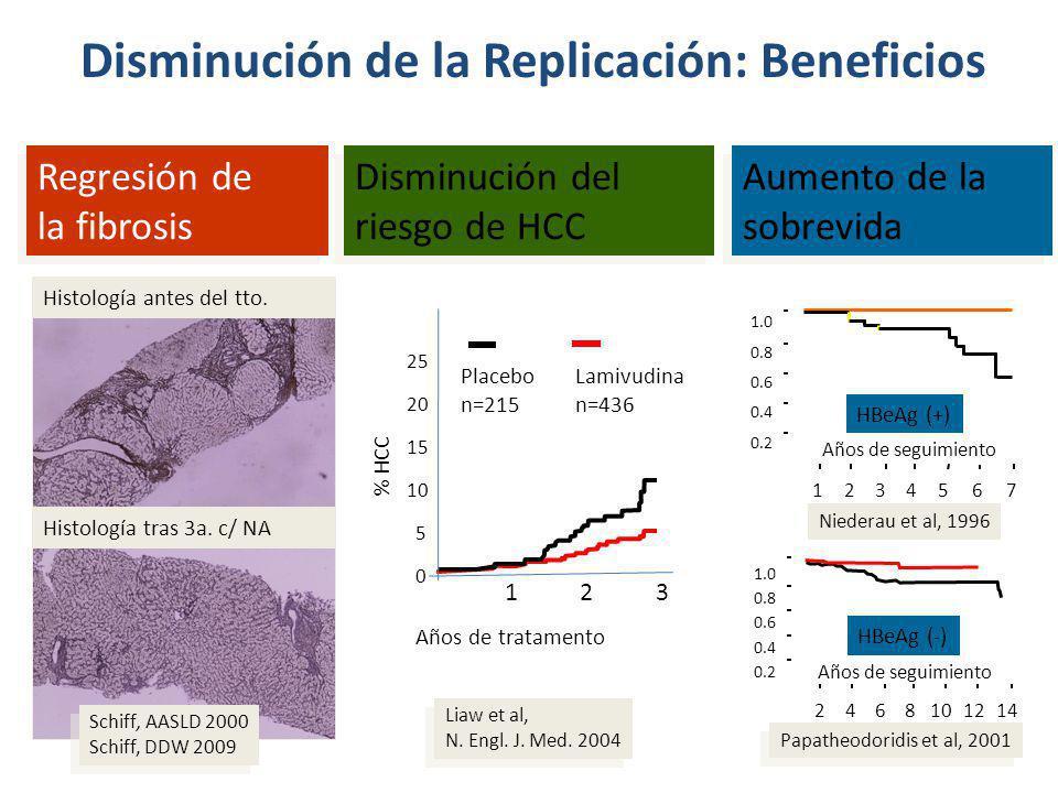 Disminución de la Replicación: Beneficios