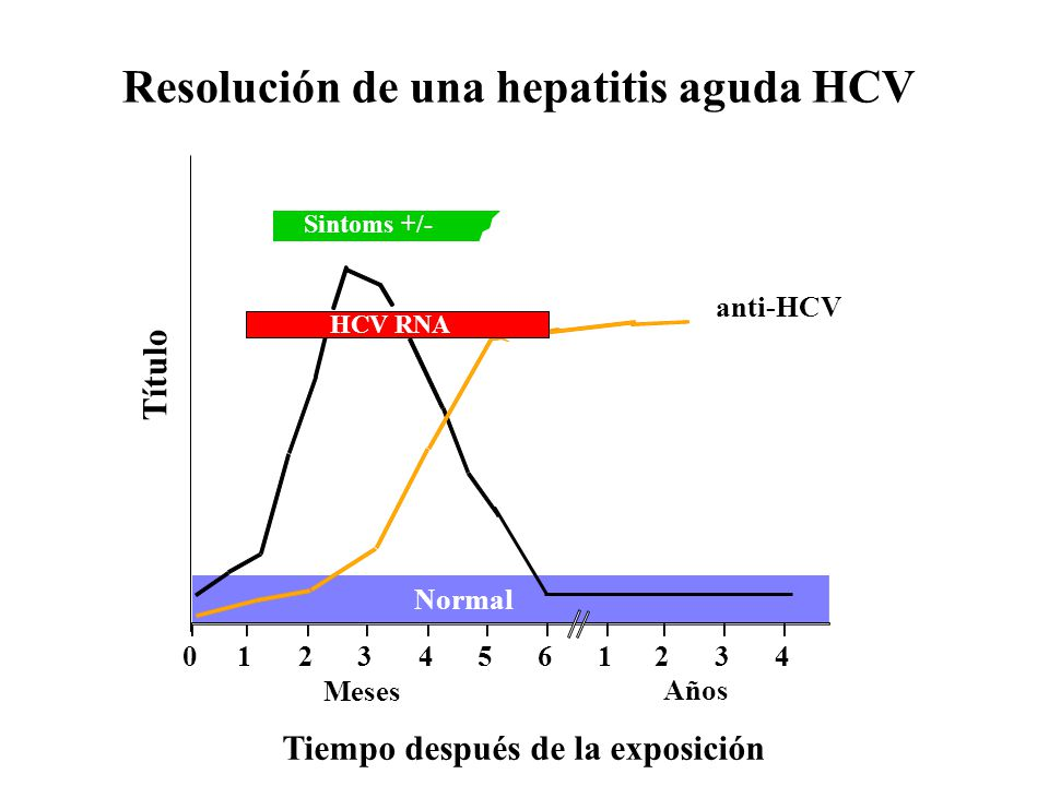 Resolución de una hepatitis aguda HCV