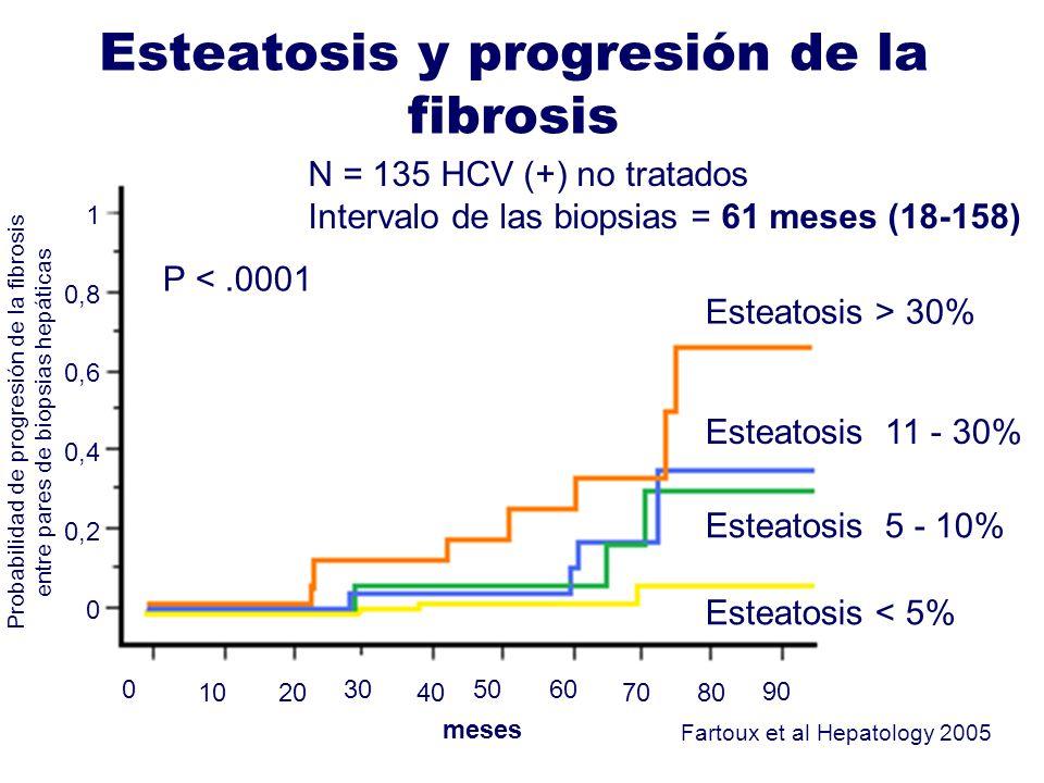 Esteatosis y progresión de la fibrosis