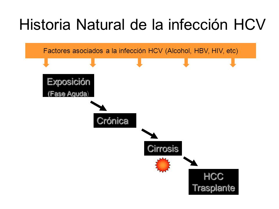 Historia Natural de la infección HCV