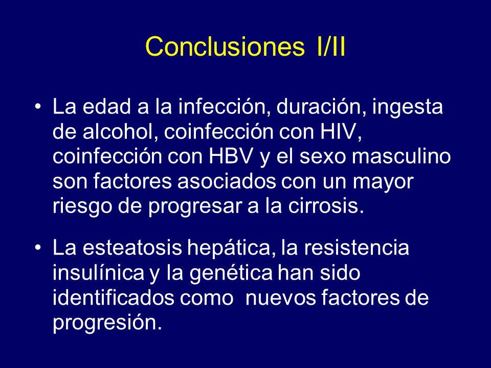 Conclusiones I/II