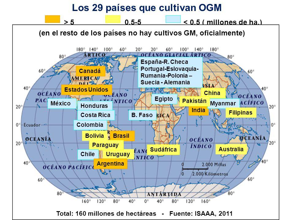 Los 29 países que cultivan OGM