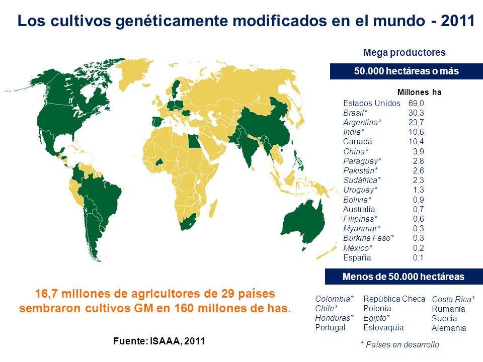 Los cultivos genéticamente modificados en el mundo - 2011