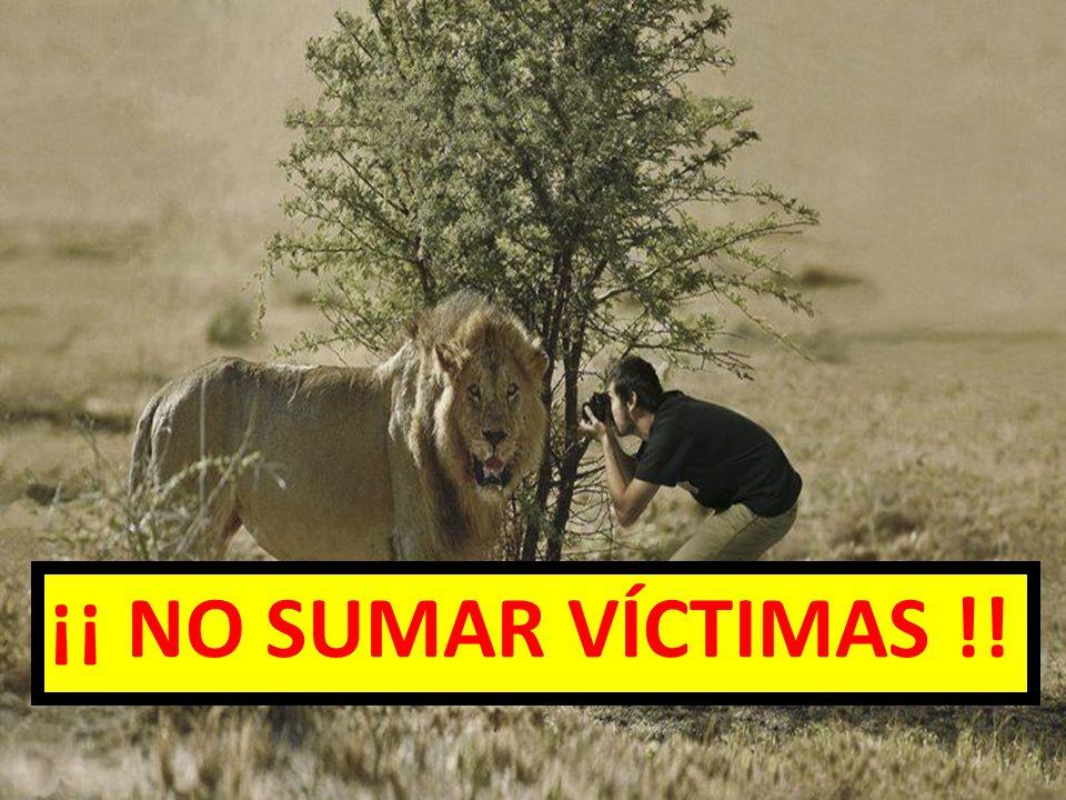 ¡¡ NO SUMAR VÍCTIMAS !! EVALUAR LA ESCENA