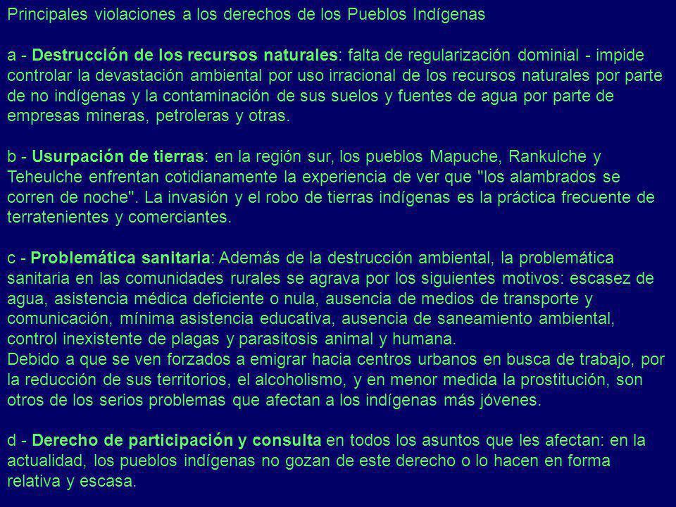 Principales violaciones a los derechos de los Pueblos Indígenas