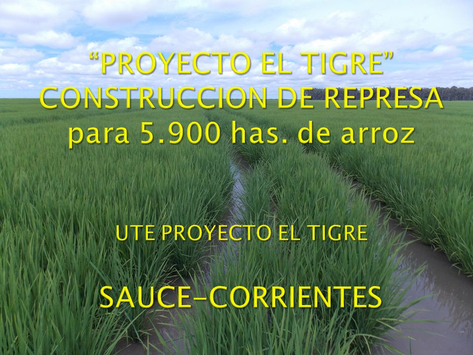 PROYECTO EL TIGRE CONSTRUCCION DE REPRESA para 5. 900 has